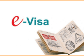 E-visa Saint-Petersbourg